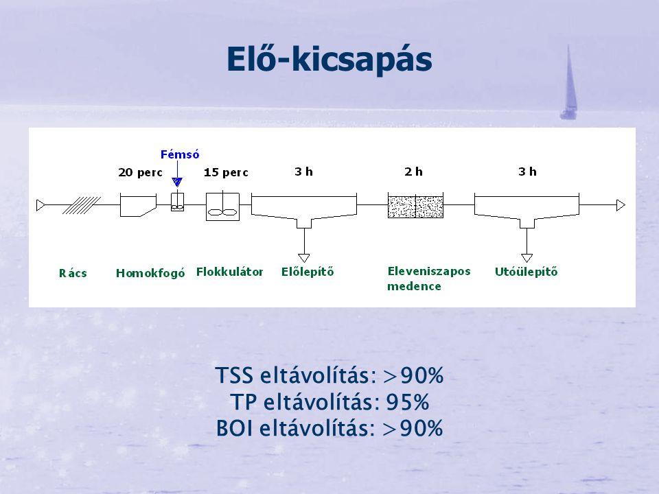 TSS eltávolítás: >90% TP eltávolítás: 95% BOI eltávolítás: >90% Elő-kicsapás