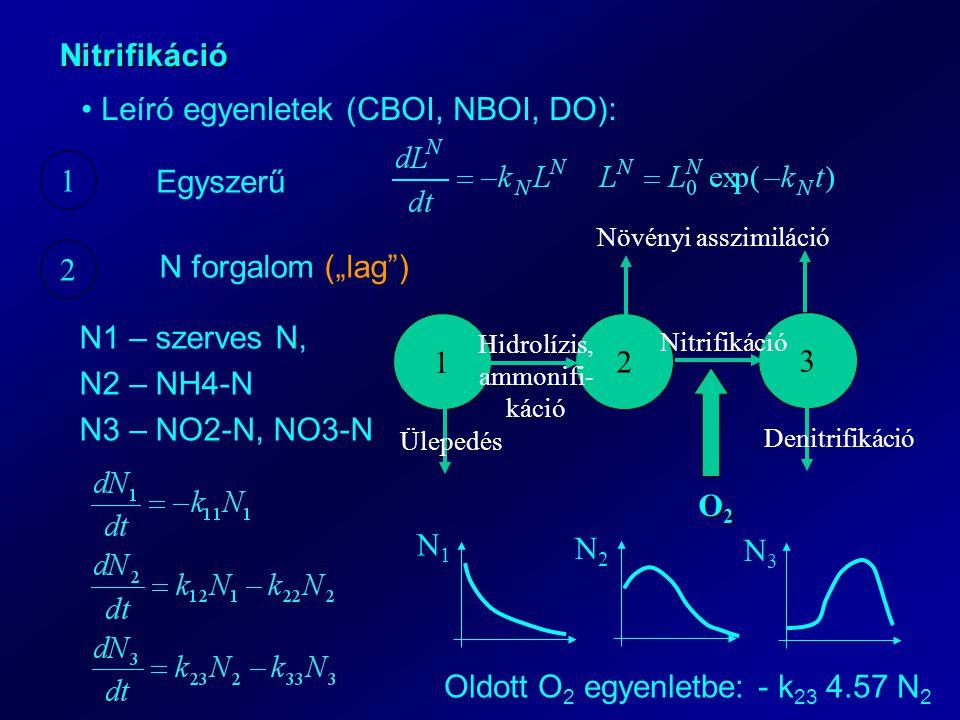 """Nitrifikáció Leíró egyenletek (CBOI, NBOI, DO): 1 2 Egyszerű N forgalom (""""lag ) 1 2 3 Ülepedés Denitrifikáció Növényi asszimiláció Hidrolízis, ammonifi- káció Nitrifikáció O2O2O2O2 N1 – szerves N, N2 – NH4-N N3 – NO2-N, NO3-N N1N1 N2N2 N3N3 Oldott O 2 egyenletbe: - k 23 4.57 N 2"""