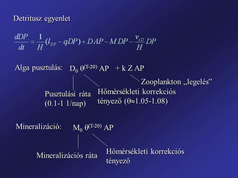 Detritusz egyenlet Alga pusztulás: D 0  (T-20) AP Pusztulási ráta (0.1-1 1/nap) Hőmérsékleti korrekciós tényező (  1.05-1.08) + k Z AP Zooplankton