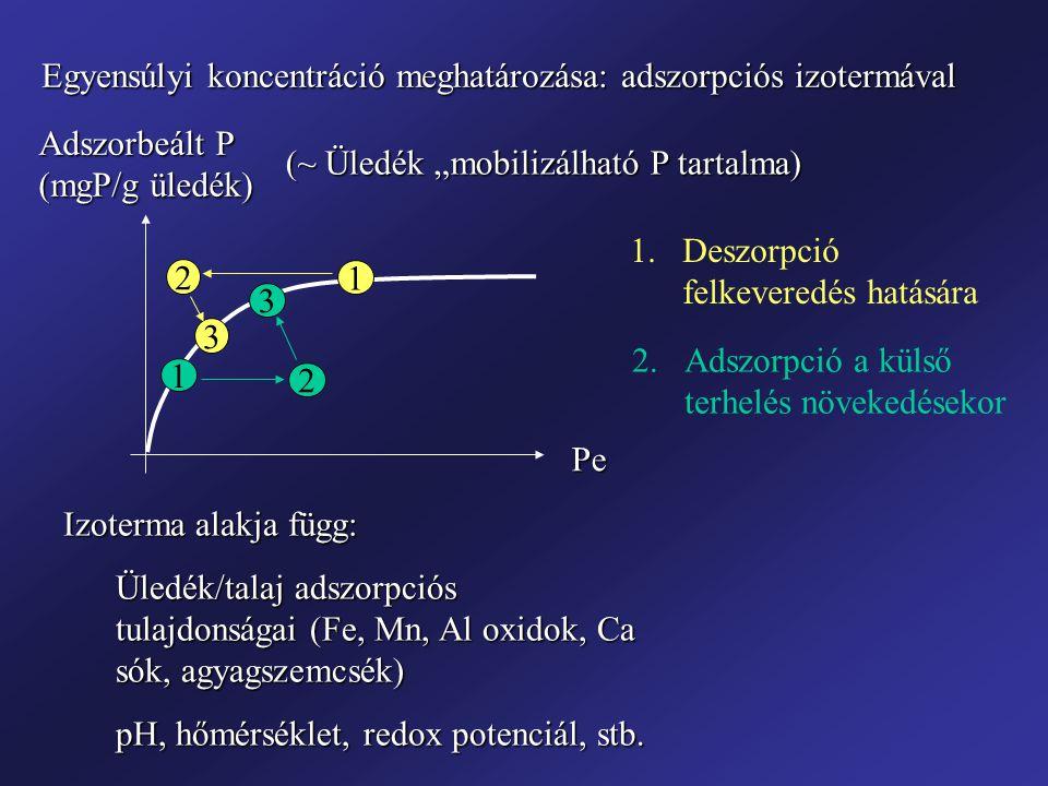 """Pe Adszorbeált P (mgP/g üledék) Egyensúlyi koncentráció meghatározása: adszorpciós izotermával (~ Üledék """"mobilizálható P tartalma) Izoterma alakja fü"""