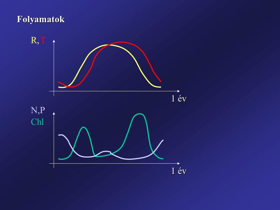 """Pe Adszorbeált P (mgP/g üledék) Egyensúlyi koncentráció meghatározása: adszorpciós izotermával (~ Üledék """"mobilizálható P tartalma) Izoterma alakja függ: Üledék/talaj adszorpciós tulajdonságai (Fe, Mn, Al oxidok, Ca sók, agyagszemcsék) pH, hőmérséklet, redox potenciál, stb."""