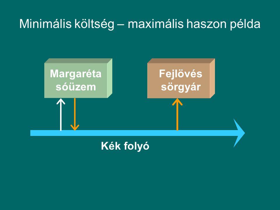 Margaréta sóüzem Fejlövés sörgyár Kék folyó Minimális költség – maximális haszon példa