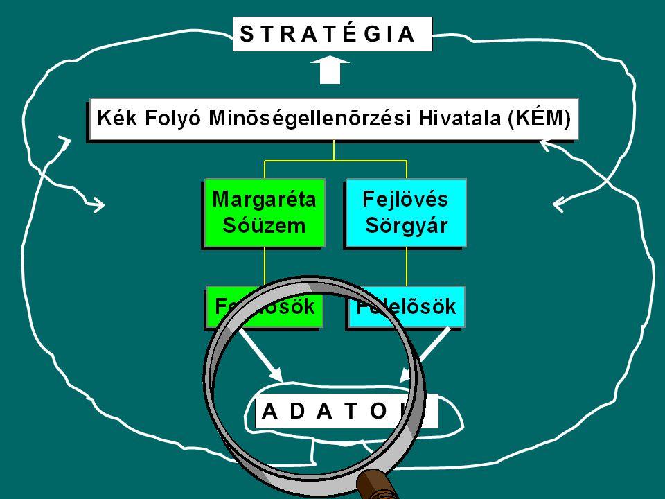 """Alapadatok a stratégia kialakításához: Vízhozam adatsorok → """"mértékadó vízhozam (KÖV) 10 m 3 /s A Kék folyó háttérkoncentrációja 25 g/m 3 A Margaréta sóüzem kibocsátása elhanyagolható mennyiségű (0.01 m 3 /s), de nagy a sótartalma (100 000 g/m 3 )"""