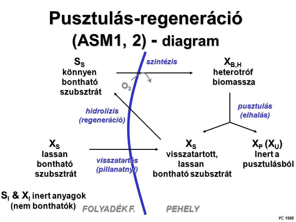 Pusztulás-regeneráció (ASM1, 2) - diagram S S könnyenbonthatószubsztrát X S lassanbonthatószubsztrát visszatartott,lassan bontható szubsztrát X P (X U