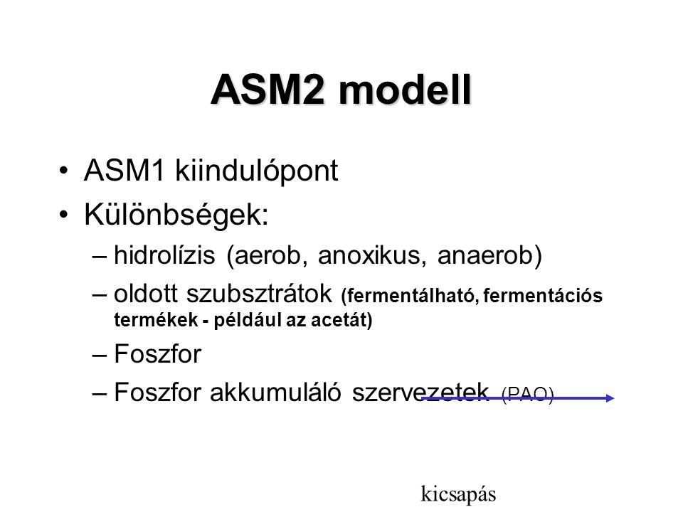 ASM2 modell ASM1 kiindulópont Különbségek: –hidrolízis (aerob, anoxikus, anaerob) –oldott szubsztrátok (fermentálható, fermentációs termékek - például