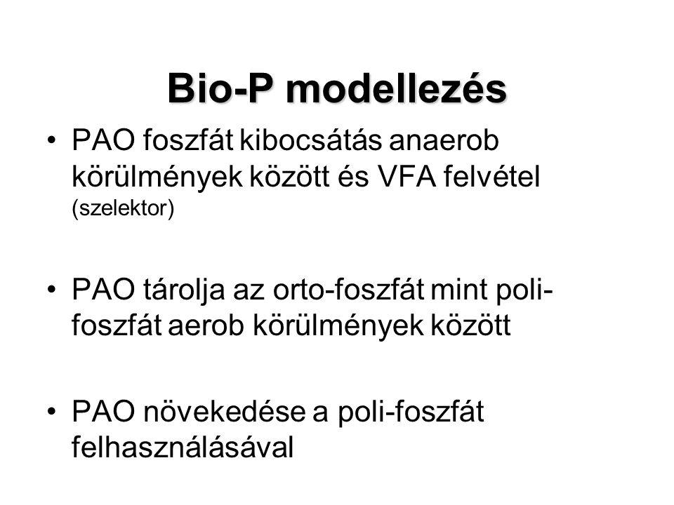 Bio-P modellezés PAO foszfát kibocsátás anaerob körülmények között és VFA felvétel (szelektor) PAO tárolja az orto-foszfát mint poli- foszfát aerob kö