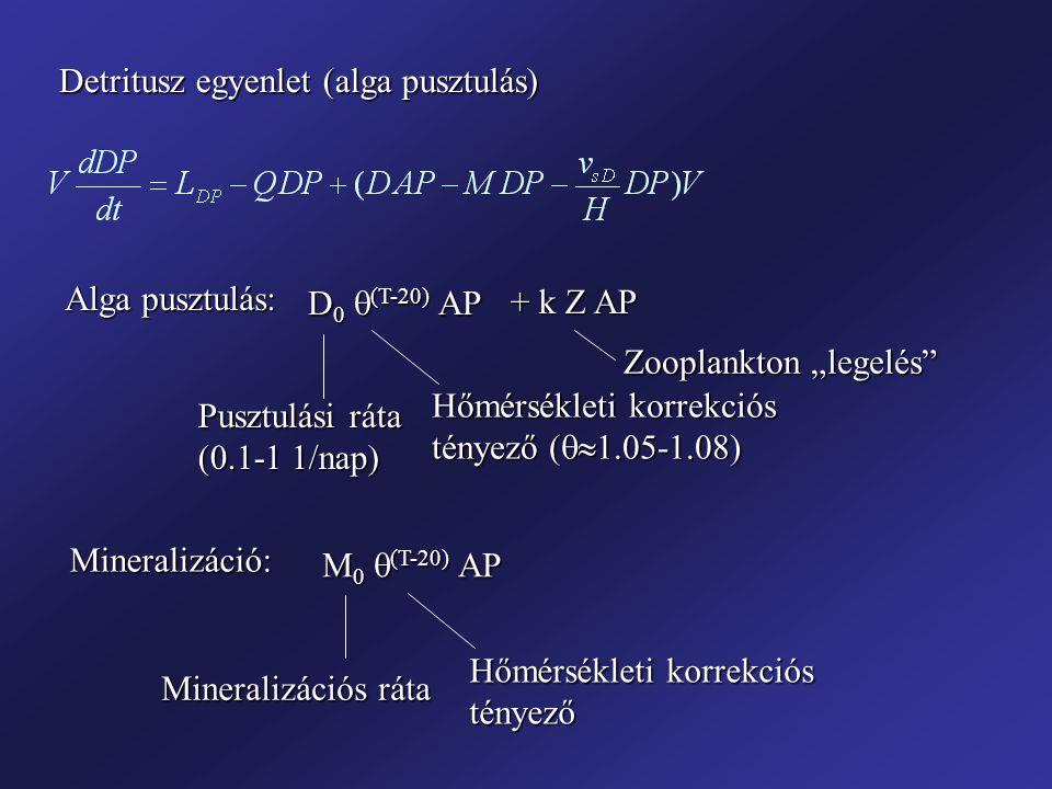 """Detritusz egyenlet (alga pusztulás) Alga pusztulás: D 0  (T-20) AP Pusztulási ráta (0.1-1 1/nap) Hőmérsékleti korrekciós tényező (  1.05-1.08) + k Z AP Zooplankton """"legelés Mineralizáció: M 0  (T-20) AP Mineralizációs ráta Hőmérsékleti korrekciós tényező"""