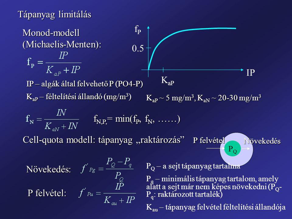 """Tápanyag limitálás Monod-modell (Michaelis-Menten): IP – algák által felvehető P (PO4-P) K aP – féltelítési állandó (mg/m 3 ) fPfP IP K aP 0.5 K aP ~ 5 mg/m 3, K aN ~ 20-30 mg/m 3 f N,P, = min(f P, f N, ……) Cell-quota modell: tápanyag """"raktározás P Q – a sejt tápanyag tartalma P q – minimális tápanyag tartalom, amely alatt a sejt már nem képes növekedni (P Q - P q : raktározott tartalék) K au – tápanyag felvétel féltelítési állandója PQPQ P felvétel Növekedés Növekedés: P felvétel:"""