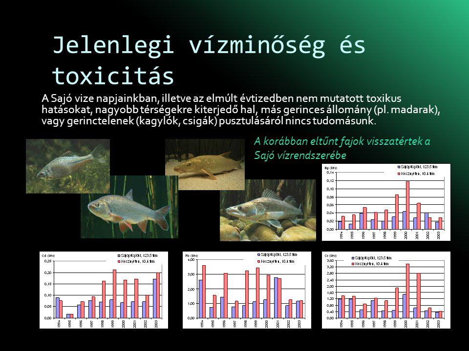Jelenlegi vízminőség és toxicitás A Sajó vize napjainkban, illetve az elmúlt évtizedben nem mutatott toxikus hatásokat, nagyobb térségekre kiterjedő hal, más gerinces állomány (pl.