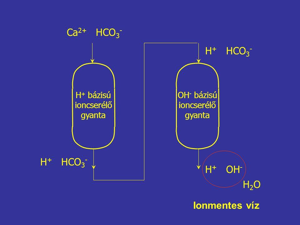 Ca 2+ HCO 3 - H + HCO 3 - H + OH - H2OH2O H + bázisú ioncserélő gyanta OH - bázisú ioncserélő gyanta Ionmentes víz