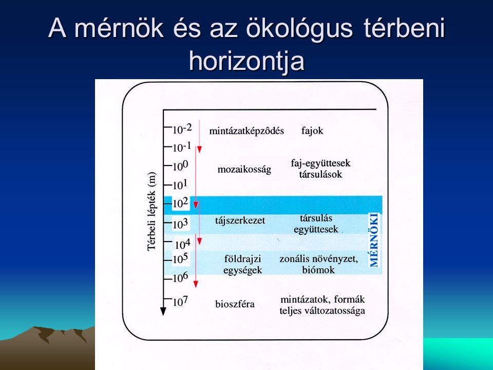 A mérnök és az ökológus térbeni horizontja