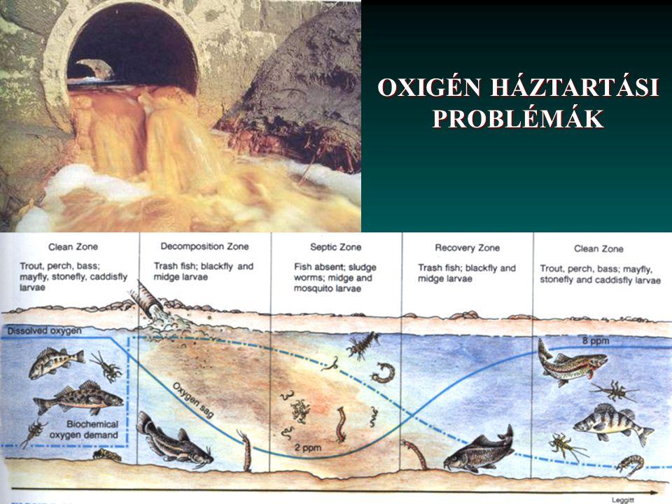 Vízminőségi jellemzők relatív szórása Függ: vízhozam, szezonális változékonyság, szennyezések