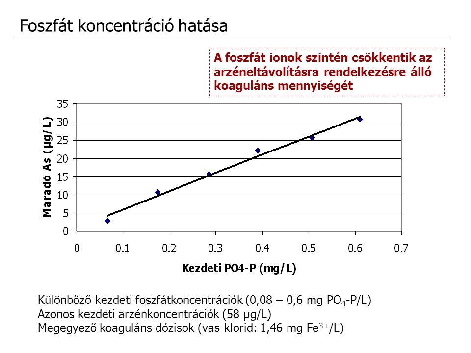 Foszfát koncentráció hatása Különbőző kezdeti foszfátkoncentrációk (0,08 – 0,6 mg PO 4 -P/L) Azonos kezdeti arzénkoncentrációk (58 μg/L) Megegyező koa