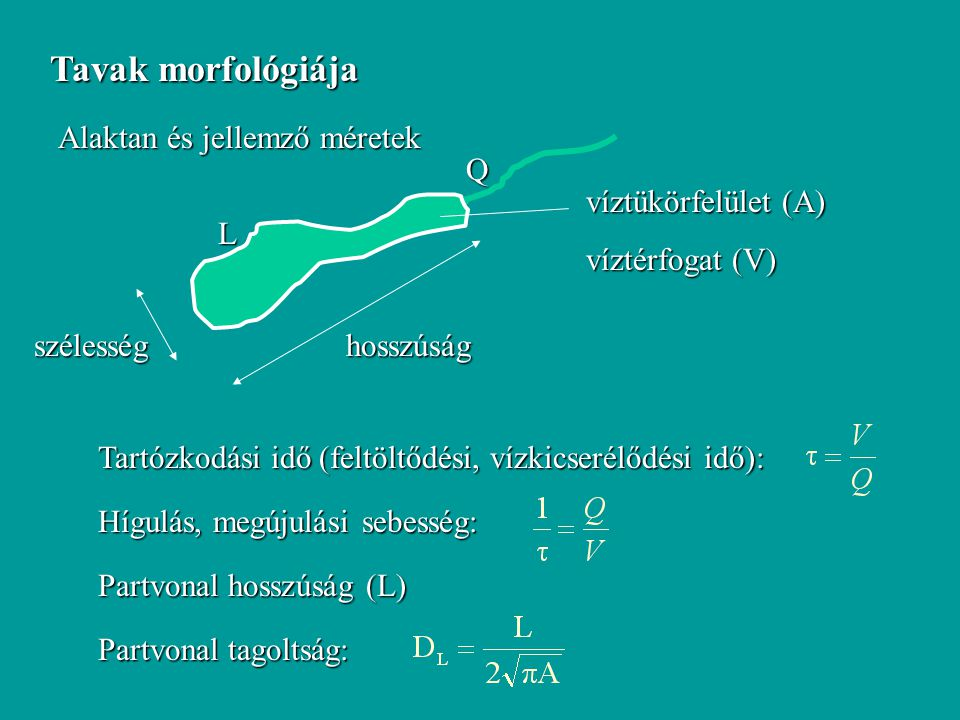 Tavak morfológiája Alaktan és jellemző méretek hosszúságszélesség víztükörfelület (A) víztérfogat (V) Tartózkodási idő (feltöltődési, vízkicserélődési