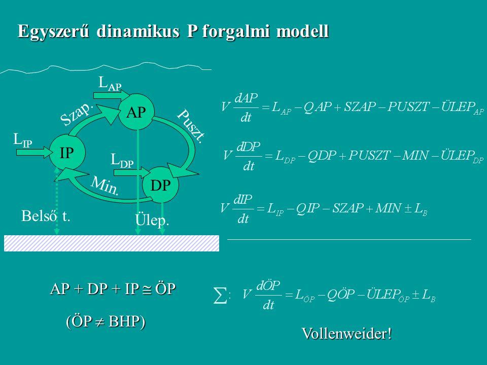 Egyszerű dinamikus P forgalmi modell IP AP DP Szap. Puszt. Min. L IP L AP L DP Ülep. Belső t. AP + DP + IP  ÖP (ÖP  BHP) Vollenweider!