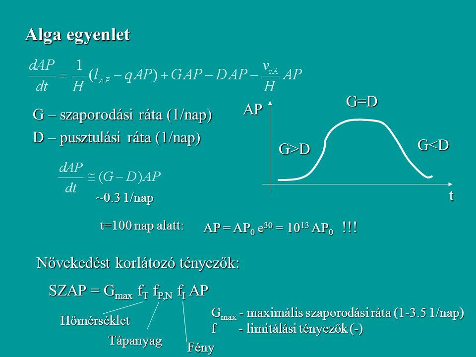Alga egyenlet G – szaporodási ráta (1/nap) D – pusztulási ráta (1/nap) t AP G>D G=D G<D ~0.3 1/nap AP = AP 0 e 30 = 10 13 AP 0 !!! t=100 nap alatt: Nö