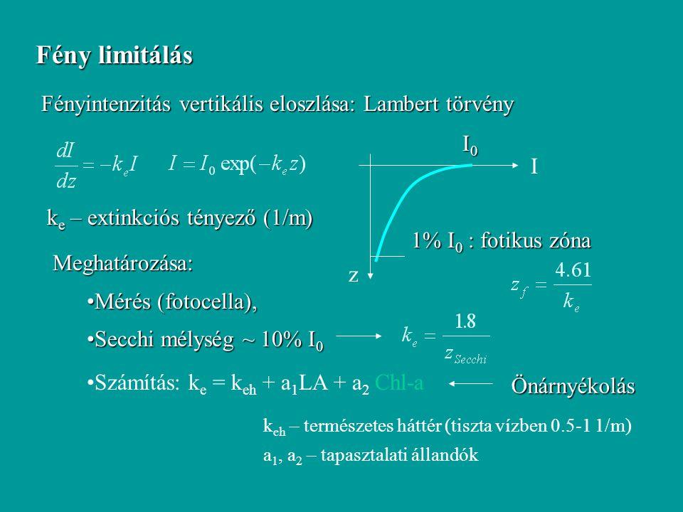 Fény limitálás Fényintenzitás vertikális eloszlása: Lambert törvény z I I0I0I0I0 1% I 0 : fotikus zóna k e – extinkciós tényező (1/m) Meghatározása: M