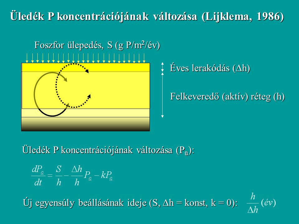 Üledék P koncentrációjának változása (Lijklema, 1986) Felkeveredő (aktív) réteg (h) Éves lerakódás (  h) Foszfor ülepedés, S (g P/m 2 /év) Üledék P k