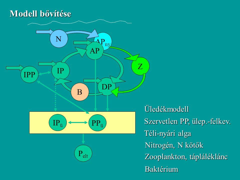 Modell bővítése AP ny IP AP DP Üledékmodell PP ü IP ü IPP N Z B Szervetlen PP, ülep.-felkev. Téli-nyári alga Nitrogén, N kötők Zooplankton, tápláléklá