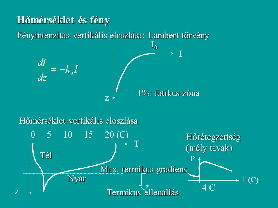 Hőmérséklet és fény Fényintenzitás vertikális eloszlása: Lambert törvény z I I0I0I0I0 1%: fotikus zóna z T Hőmérséklet vertikális eloszlása 0 5 10 15