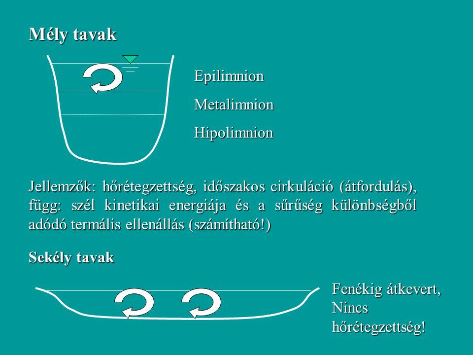 Mély tavak EpilimnionMetalimnionHipolimnion Jellemzők: hőrétegzettség, időszakos cirkuláció (átfordulás), függ: szél kinetikai energiája és a sűrűség