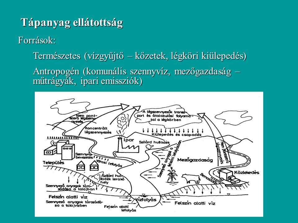 Tápanyag ellátottság Források: Természetes (vízgyűjtő – kőzetek, légköri kiülepedés) Antropogén (komunális szennyvíz, mezőgazdaság – műtrágyák, ipari