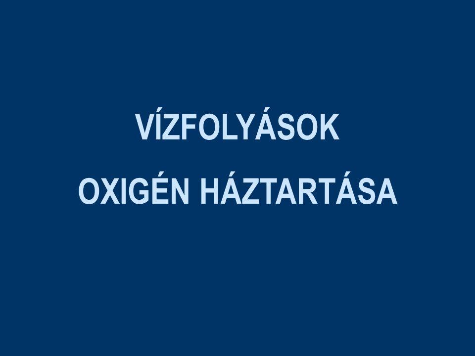 VÍZFOLYÁSOK OXIGÉN HÁZTARTÁSA