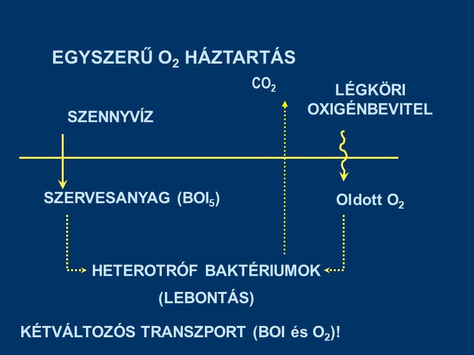 EGYSZERŰ O 2 HÁZTARTÁS SZENNYVÍZ SZERVESANYAG (BOI 5 ) HETEROTRÓF BAKTÉRIUMOK (LEBONTÁS) LÉGKÖRI OXIGÉNBEVITEL Oldott O 2 KÉTVÁLTOZÓS TRANSZPORT (BOI és O 2 ).