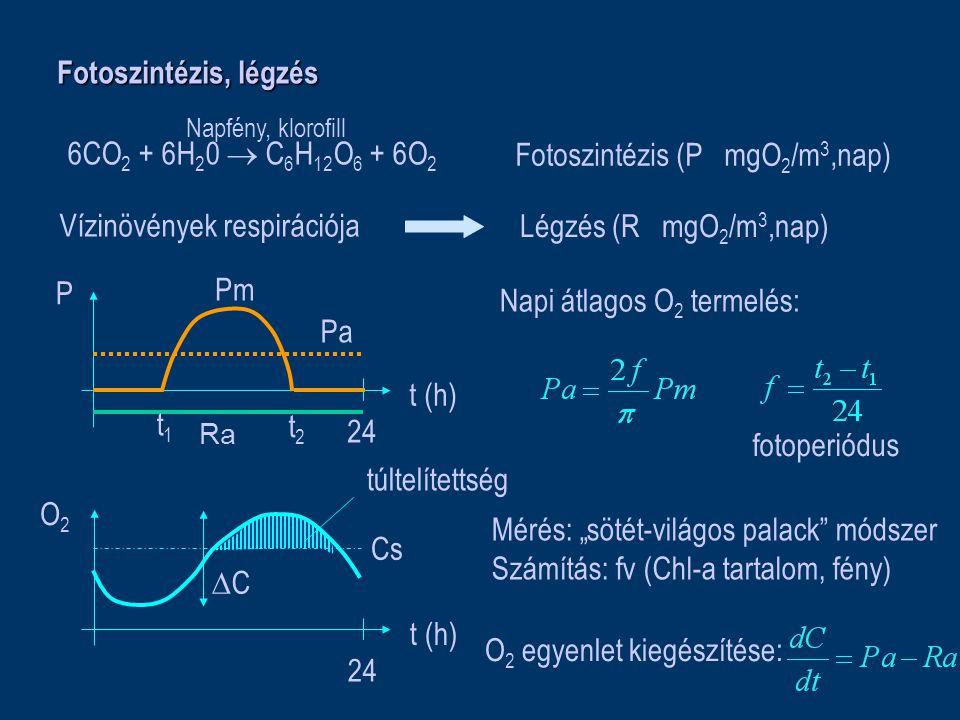 """Fotoszintézis, légzés 6CO 2 + 6H 2 0  C 6 H 12 O 6 + 6O 2 Napfény, klorofill Fotoszintézis (P mgO 2 /m 3,nap) Légzés (R mgO 2 /m 3,nap) t (h) P 24 t (h) O2O2 24 Cs túltelítettség CC t1t1 t2t2 Pa Pm Napi átlagos O 2 termelés: fotoperiódus O 2 egyenlet kiegészítése: Mérés: """"sötét-világos palack módszer Számítás: fv (Chl-a tartalom, fény) Vízinövények respirációja Ra"""