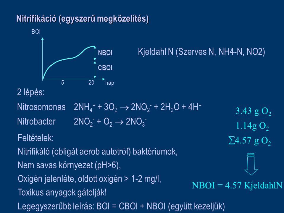 Nitrifikáció (egyszerű megközelítés) 5 20 nap BOI CBOI NBOI Kjeldahl N (Szerves N, NH4-N, NO2) 2 lépés: Nitrosomonas2NH 4 + + 3O 2  2NO 2 - + 2H 2 O + 4H + Nitrobacter2NO 2 - + O 2  2NO 3 - 3.43 g O 2 1.14g O 2  4.57 g O 2 NBOI = 4.57 KjeldahlN Feltételek: Nitrifikáló (obligát aerob autotróf) baktériumok, Nem savas környezet (pH>6), Oxigén jelenléte, oldott oxigén > 1-2 mg/l, Toxikus anyagok gátolják.