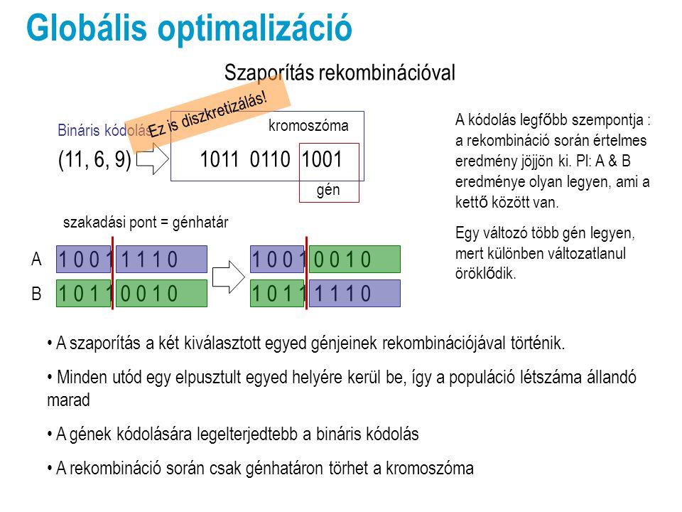Globális optimalizáció Szaporítás rekombinációval A szaporítás a két kiválasztott egyed génjeinek rekombinációjával történik.