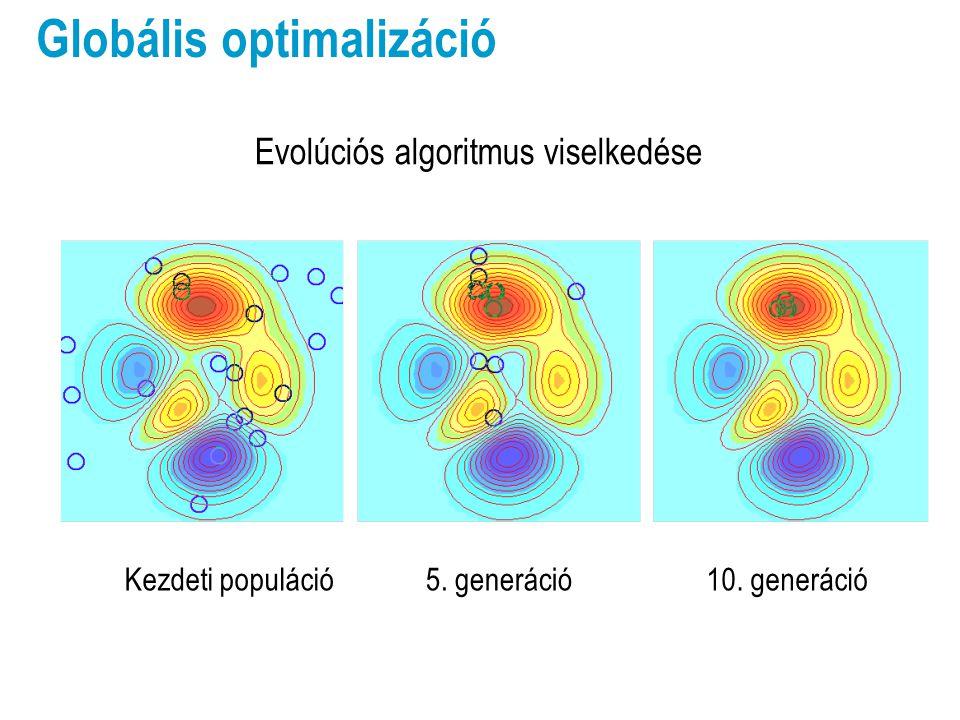 Kezdeti populáció5. generáció10. generáció Globális optimalizáció Evolúciós algoritmus viselkedése
