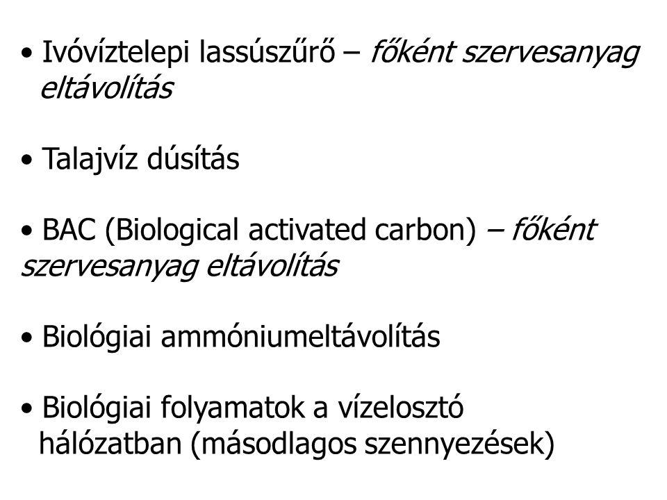 Biológiai folyamatok a vízelosztó hálózatban V.