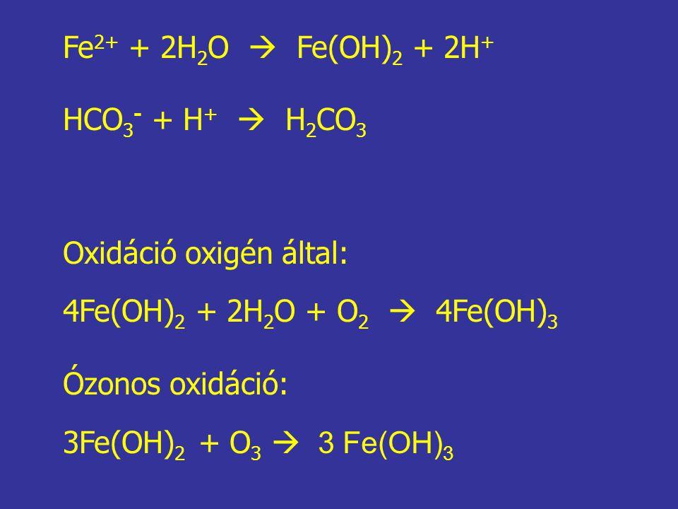 Fe 2+ + 2H 2 O  Fe(OH) 2 + 2H + HCO 3 - + H +  H 2 CO 3 Oxidáció oxigén által: 4Fe(OH) 2 + 2H 2 O + O 2  4Fe(OH) 3 Ózonos oxidáció: 3Fe(OH) 2 + O 3
