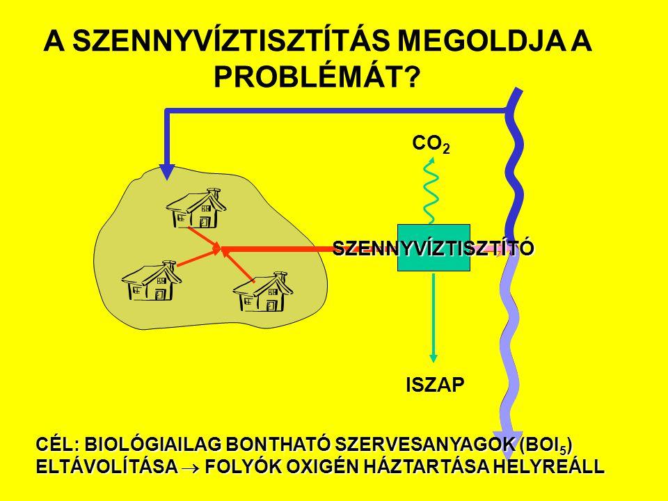 CO 2 ISZAP SZENNYVÍZTISZTÍTÓ A SZENNYVÍZTISZTÍTÁS MEGOLDJA A PROBLÉMÁT? CÉL: BIOLÓGIAILAG BONTHATÓ SZERVESANYAGOK (BOI 5 ) ELTÁVOLÍTÁSA  FOLYÓK OXIGÉ