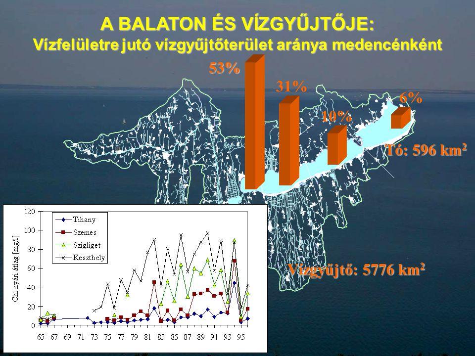 A BALATON ÉS VÍZGYŰJTŐJE: Vízfelületre jutó vízgyűjtőterület aránya medencénként Vízgyűjtő: 5776 km 2 Tó: 596 km 2 53% 31% 10% 6%