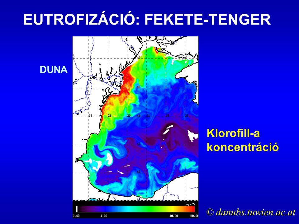 Klorofill-a koncentráció EUTROFIZÁCIÓ: FEKETE-TENGER © danubs.tuwien.ac.at DUNA