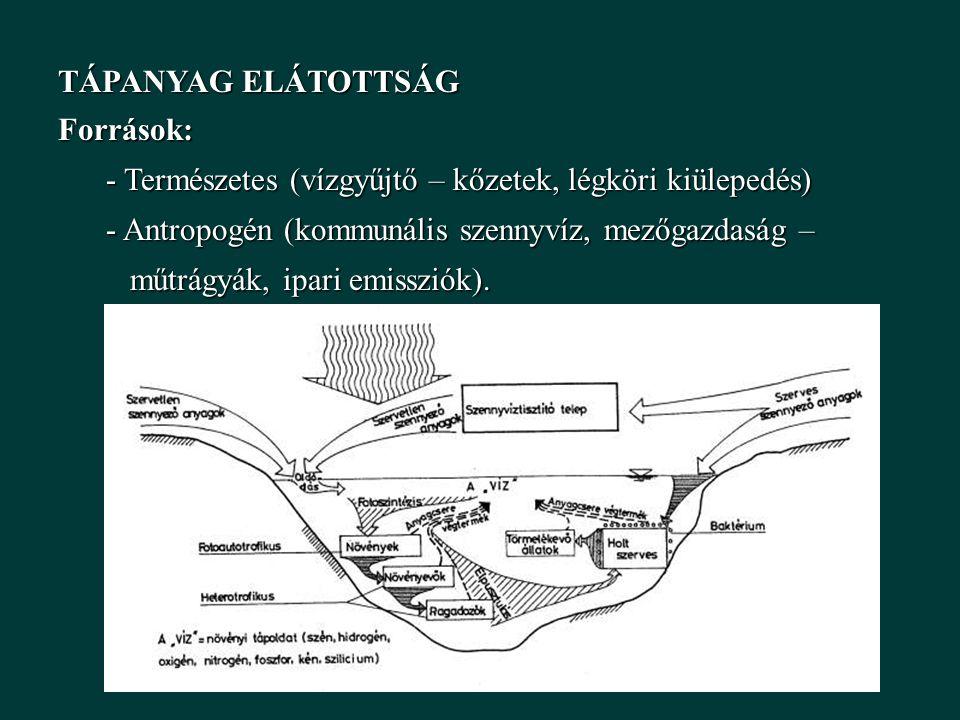 TÁPANYAG ELÁTOTTSÁG Források: - Természetes (vízgyűjtő – kőzetek, légköri kiülepedés) - Antropogén (kommunális szennyvíz, mezőgazdaság – műtrágyák, ipari emissziók).