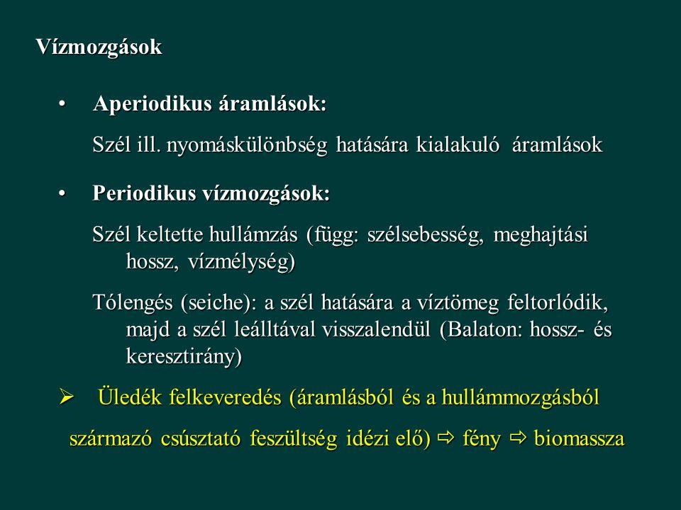 Vízmozgások Aperiodikus áramlások: Aperiodikus áramlások: Szél ill. nyomáskülönbség hatására kialakuló áramlások Periodikus vízmozgások:Periodikus víz