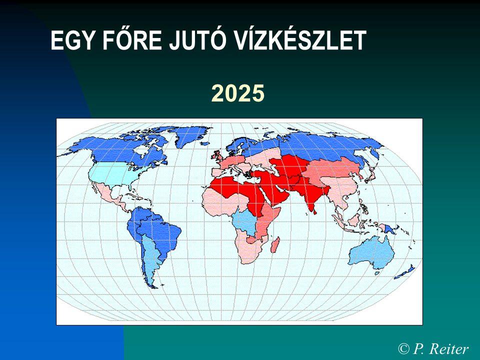 2025 © P. Reiter EGY FŐRE JUTÓ VÍZKÉSZLET