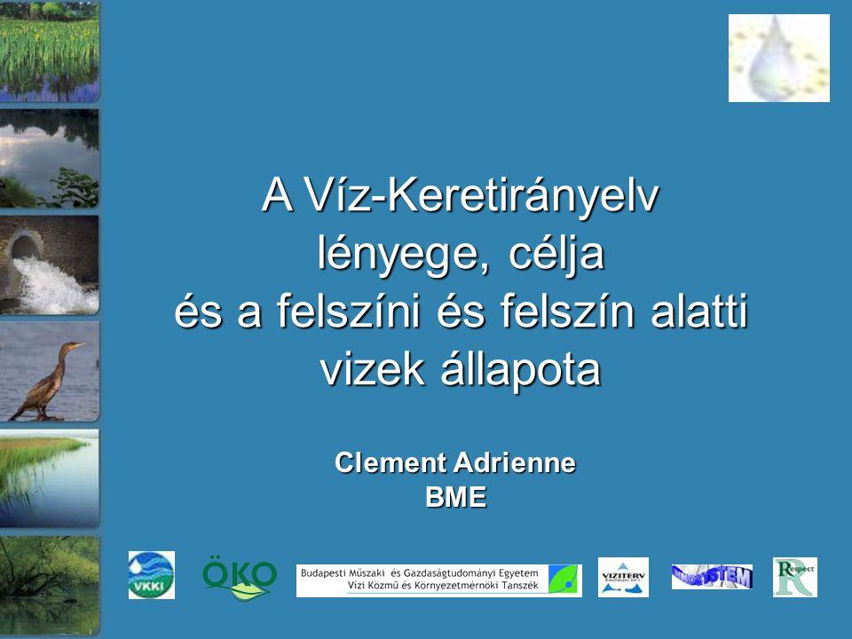 """Az EU vízügyi politikájának célja a fenntartható vízhasználatok megvalósítása: A vizek jó állapotának elérése 2015-ig 2000: EU Víz Keretirányelv (VKI) 2000: EU Víz Keretirányelv (VKI) """"Víz Keretirányelv (2000/60/EK) 2000."""