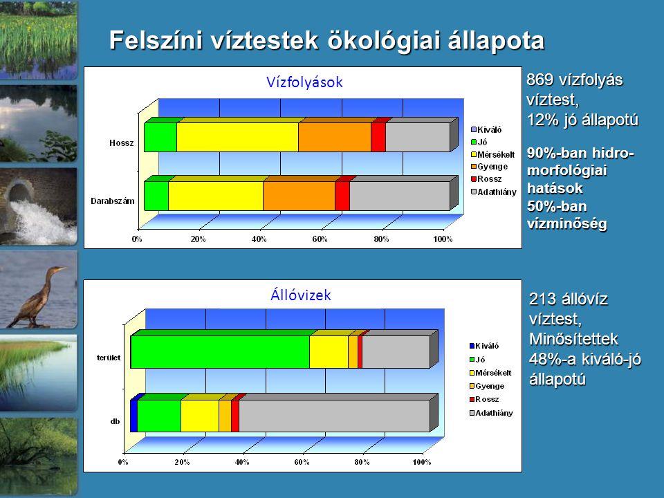 Felszíni víztestek ökológiai állapota 869 vízfolyás víztest, 12% jó állapotú 213 állóvíz víztest, Minősítettek 48%-a kiváló-jó állapotú 90%-ban hidro-