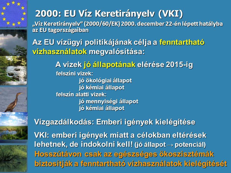 Az EU vízügyi politikájának célja a fenntartható vízhasználatok megvalósítása: A vizek jó állapotának elérése 2015-ig 2000: EU Víz Keretirányelv (VKI)