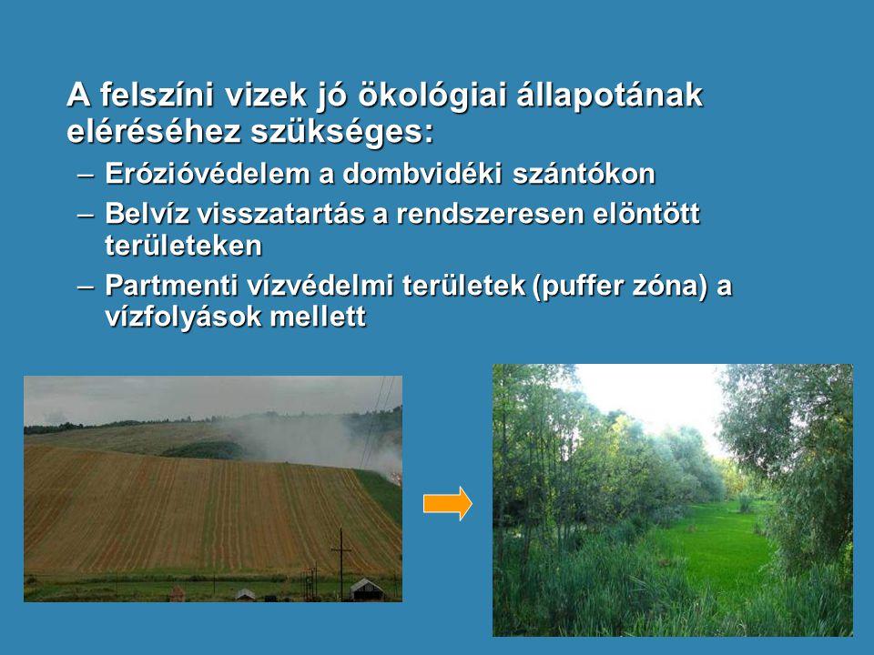 A felszíni vizek jó ökológiai állapotának eléréséhez szükséges: –Erózióvédelem a dombvidéki szántókon –Belvíz visszatartás a rendszeresen elöntött ter