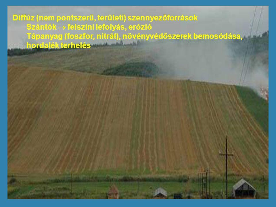 Diffúz (nem pontszerű, területi) szennyezőforrások Szántók  felszíni lefolyás, erózió Tápanyag (foszfor, nitrát), növényvédőszerek bemosódása, hordal