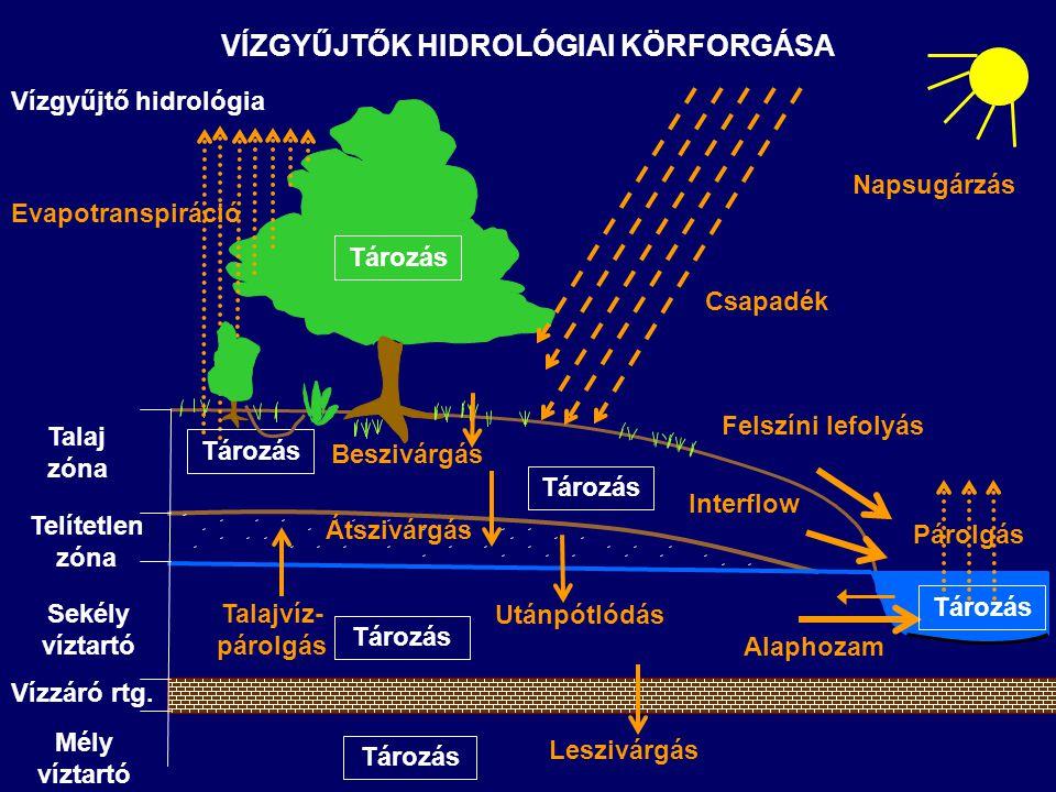 EVAPOTRANSZSPIRÁCIÓ Az intercepció, a mélyedésekben tárolt víz párolgása, növényi transzspiráció és a talajprofil vagy vízfelszín párologtatása együttesen, nedvességtartalom csökkenést eredményez (atmoszféra felé) Felszíni lefolyásra közvetlenül nincs nagy hatással A talajprofil nedvességtartalmára jelentős hatást gyakorol, következésképp az aktuális beszivárgási rátát közvetlenül meghatározza Potenciális értéke ideális növényfejlődés és nedvességtartalom feltételezése mellett számítható a meteorológiai jellemzőkből Aktuális értéke a növénytakaró típusától, a növekedési szakasz állapotától, az aktuális nedvességtartalomtól függ A vízkapacitás feletti víztartalom esetén az evapotranszspiráció értéke a maximálishoz közeli A hervadáspont alatti víztartalom esetén transzspiráció már nem lehetséges, a felszínhez közel párolgás előfordulhat