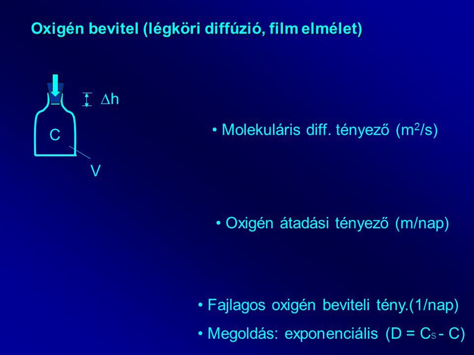 Oxigén bevitel (légköri diffúzió, film elmélet) C V hh Molekuláris diff.