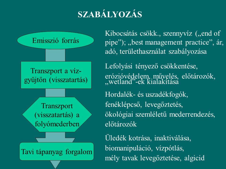 """SZABÁLYOZÁS Emisszió forrás Transzport a víz- gyűjtőn (visszatartás) Transzport (visszatartás) a folyómederben Tavi tápanyag forgalom Kibocsátás csökk., szennyvíz (""""end of pipe ); """"best management practice , ár, adó, területhasználat szabályozása Lefolyási tényező csökkentése, erózióvédelem, művelés, előtározók, """"wetland -ek kialakítása Hordalék- és uszadékfogók, fenéklépcső, levegőztetés, ökológiai szemléletű mederrendezés, előtározók Üledék kotrása, inaktiválása, biomanipuláció, vízpótlás, mély tavak levegőztetése, algicid"""