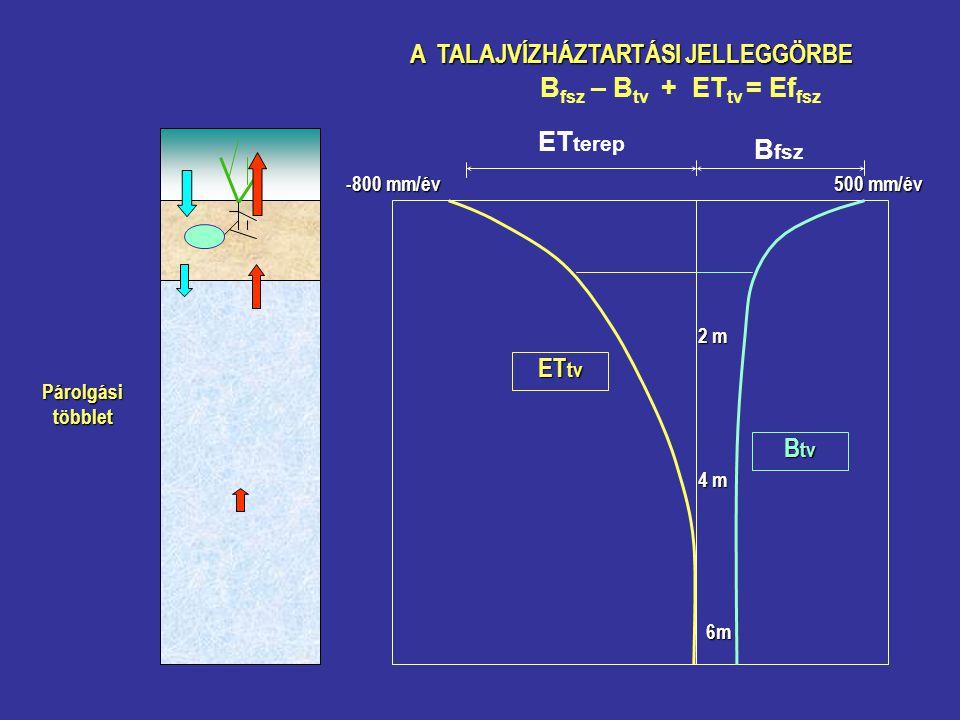 A TALAJVÍZHÁZTARTÁSI JELLEGGÖRBE B fsz ET terep B fsz – B tv + ET tv = Ef fsz B tv ET tv Párolgásitöbblet 500 mm/év -800 mm/év 2 m 4 m 6m