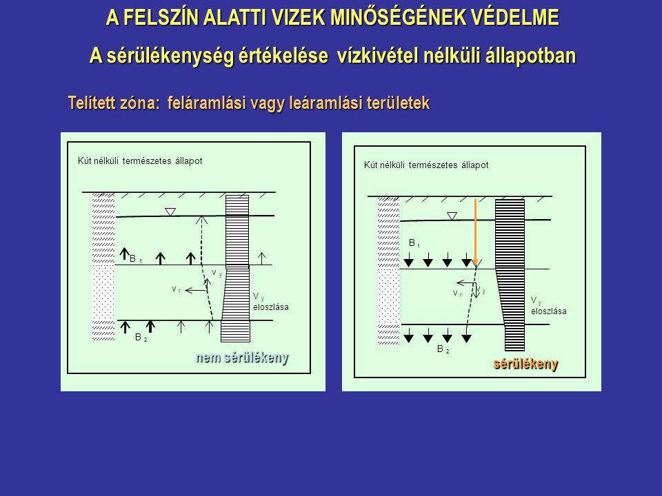 A FELSZÍN ALATTI VIZEK MINŐSÉGÉNEK VÉDELME A sérülékenység értékelése vízkivétel nélküli állapotban Telített zóna: feláramlási vagy leáramlási területek Kút nélküli természetes állapot B 1 B 2 V y eloszlása v y v r nem sérülékeny Kút nélküli természetes állapot B 1 B 2 V y eloszlása v y v r sérülékeny